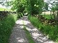 Track towards Rowland - geograph.org.uk - 1365711.jpg