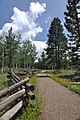 Trail at Kaibab National Forest - Oct 2017.jpg