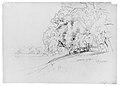 Trees and Dog MET ap68.187 verso.jpg