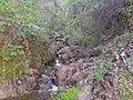 Tuolumne County, CA, USA - panoramio (23).jpg