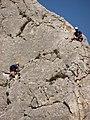 Turda gorges (3959689541).jpg