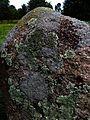 Tykocin - cmentarz żydowski - ndx - 6.jpg