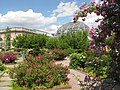 U.S. Botanic Garden in May (23751373446).jpg