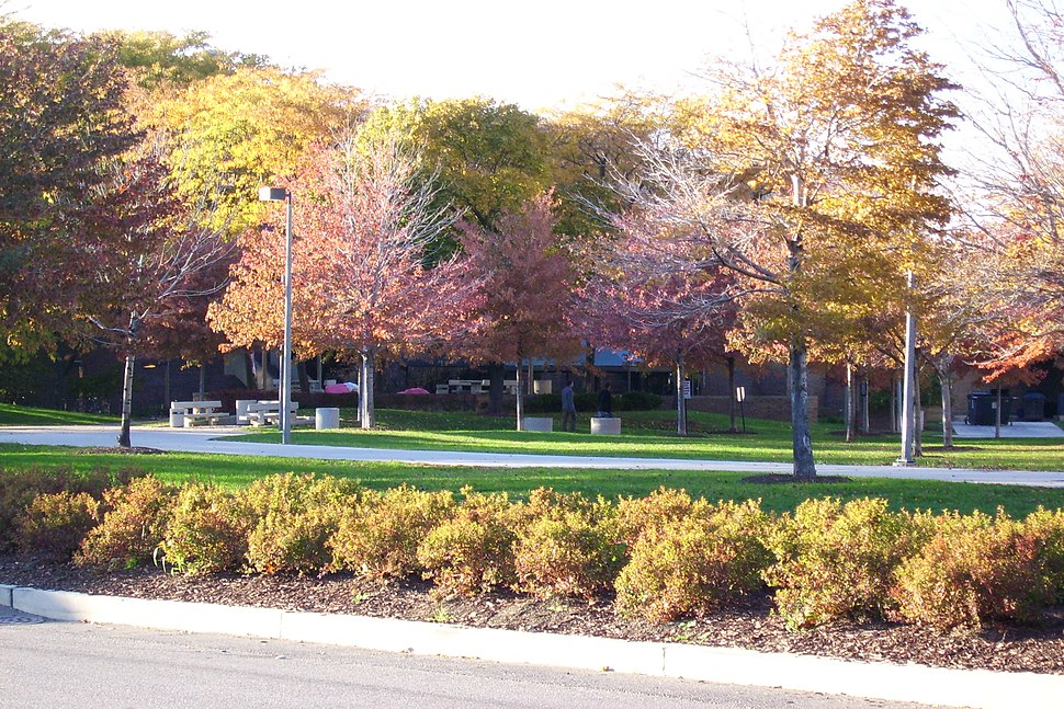 UIC East campus in autumn colors