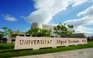 Miguel Hernández University of Elche - Rectorado Building, Campus of Elche, UMH.