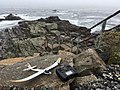 UMX Radian glider and Spektrum DX6 radio on a rock at Bald Head Cliff IMG 2814 FRD.jpg
