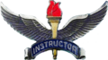 USAF Training Instructor Badges-Historical.png