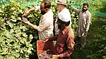USAID Agribusiness Project (16449470176).jpg