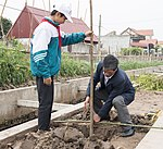 USAID supports tree planting in Nam Dinh Province (32475003064).jpg