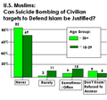 US Muslim opinions on suicide bombing (2006).png