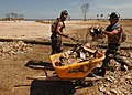 US Navy 050907-N-4374S-007 U.S. Navy Seabees, Steelworker Terry McCormack and Steelworker Michael Delafuente, both assigned to Naval Mobile Construction Battalion Seven (NMCB-7), remove debris at the Jones Park in Gulfport, Mis.jpg