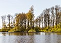 Uitzicht over de Bekhofplas. Locatie, natuurterrein Beekdal Linde Bekhofplas 01.jpg