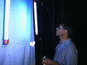 Entomologist using a UV light for collecting beetles in the Paraguayan Chaco.