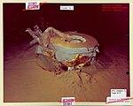 Underwater Ice Station Zebra, 11 - Flickr - The Central Intelligence Agency.jpg
