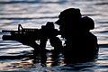 United States Navy SEALs 283.jpg