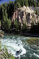 Upper Falls Yellowstone River 16.JPG