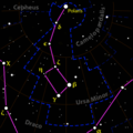 Ursa minor constellation map black.png