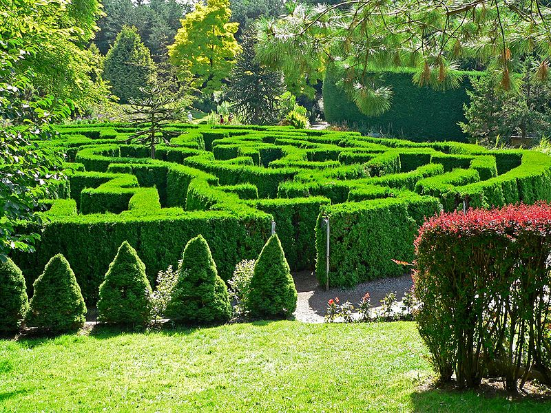 File:VanDusen Botanical Garden maze.jpg