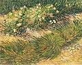 Van Gogh - Rasenstück mit Schmetterlingen.jpeg