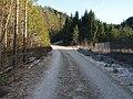 Veien til Stomnås - panoramio.jpg