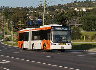 Buses in Melbourne