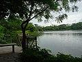 View of Lotus Pond.JPG