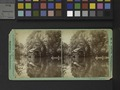 View on the Susquehanna, near the outlet of Otsego Lake (NYPL b11707961-G91F108 029F).tiff