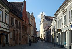 Vilnius Pilies street in the morning.jpg