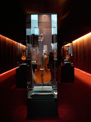 "Traditional violin craftsmanship in Cremona - The ""treasure box"" at the Violin Museum in Cremona"