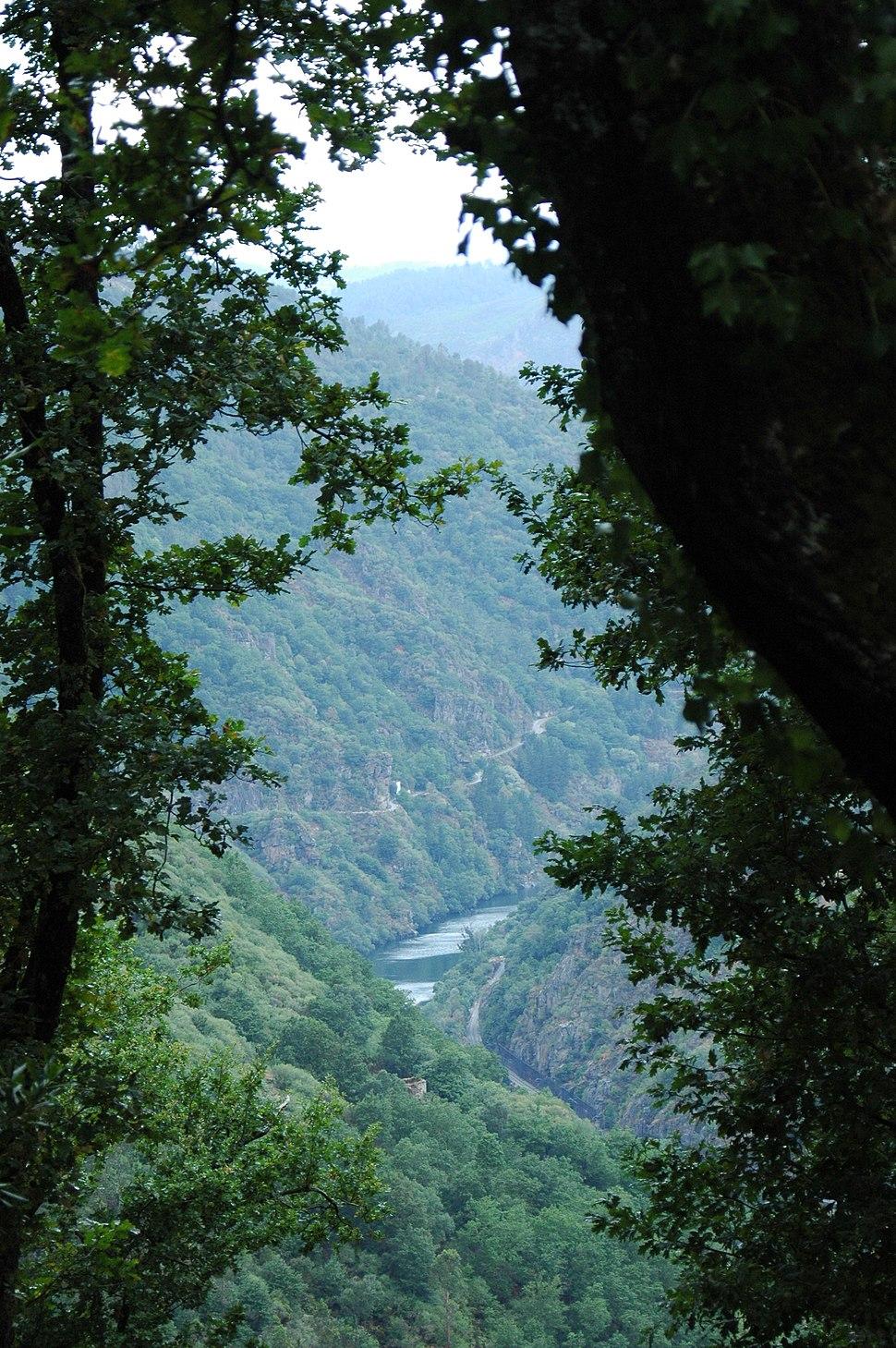 Vista desde o Parador Santo Estevo, Luíntra, Nogueira de Ramuín