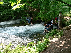 Bosna (river) - The source of the Bosna river on the outskirts of Sarajevo.