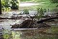 WE Mud slide picnic area (6130297883).jpg