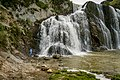 Waihi Falls - 23148927951.jpg