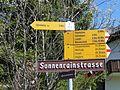 Wanderwegweiser Sörenberg 1170.jpg