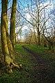Warwick Wood - geograph.org.uk - 736819.jpg