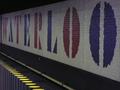 Waterloo Banner.png