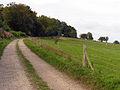 Wayfarer's Walk - geograph.org.uk - 62419.jpg