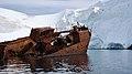 Whaling ship wreck Gouvernoren.jpg