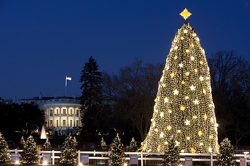 White House and the National Christmas Tree in Washington, D.C., Dec. 16, 2009