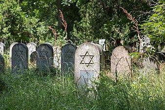 Wien, Zentralfriedhof, Alter Jüdischer Friedhof -- 2018 -- 3220.jpg