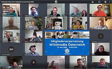 Wikimedia Österreich Mitgliederversammlung 2020 online.jpg
