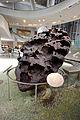 Willamette meteorite AMNH.jpg