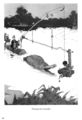 William Heath Robinson Inventions - Page 042.png
