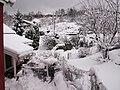 Winter at Skibbuvollen - panoramio.jpg