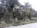 World War II pillbox between the Thames and Culham Cut, Oxfordshire 03.jpg