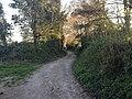 Worthing, UK - panoramio (113).jpg