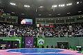 Wrestling at the 2015 European Games 11.jpg