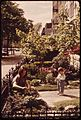 YOUNG MOTHER PLANTS HER SPRING GARDEN IN FRONT OF HER HOUSE ON 3RD STREET NEAR PROSPECT PARK, BROOKLYN - NARA - 551728.jpg