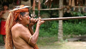 Blowgun - Demonstration of a blowgun by a Yahua hunter
