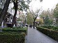 Yerevan, Abovyan street, 18 Nov. 2015.jpg